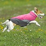 Waterproof Dog Coat, Soft Fleece Lined Reflective Dog Jacket for Winter, Outdoor Sports Pet Vest Snowsuit Apparel(Pink XS)
