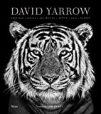David Yarrow Photography: Americas Africa