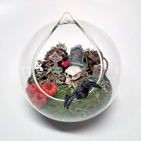 Amazon Com Pixie Glare Hanging Glass Terrarium Kit Halloween