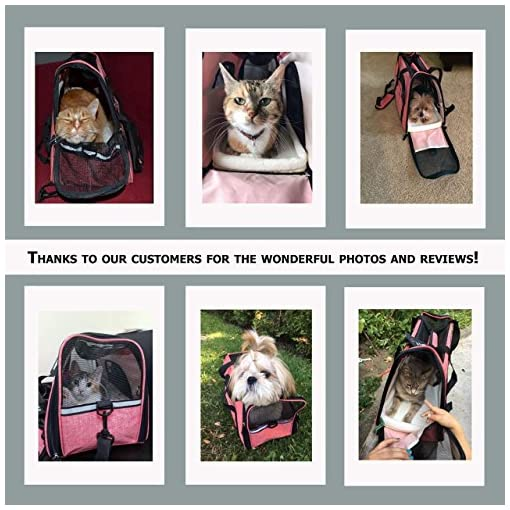 8390834d5d Amazing Pink Pet Carrier by TailHouse  Stylish   Heavy-Duty