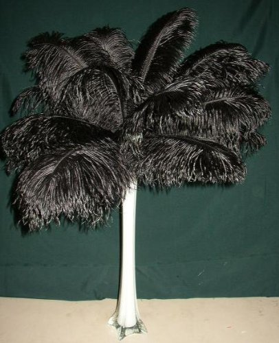 "SPECIAL LOT Wholesale Bulk Ostrich-- BLACK 100 Deluxe Ostrich Plumes-10-14"" Long--Wedding Eiffel Tower Feathers"