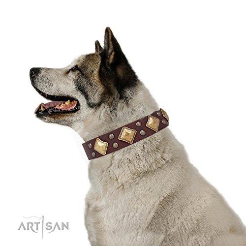 35 inch dog collar - 7