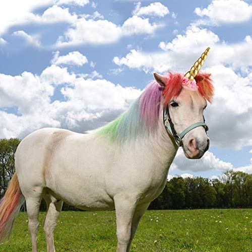 K KUMEED Shiny Unicorn Horn Elastic Headband with Floral for Horses Photo Booth Props Cosplay Costume Decor, Gold