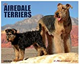 2015 Just Airedale Terriers Wall Calendar Willow Creek Press {jg}