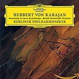 Stravinsky: The Rite of Spring / Bartok: Concerto