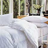 Early's of Witney Hungarian Goose Feather & Down 13.5 Tog Single bed Duvet by Early's of Witney