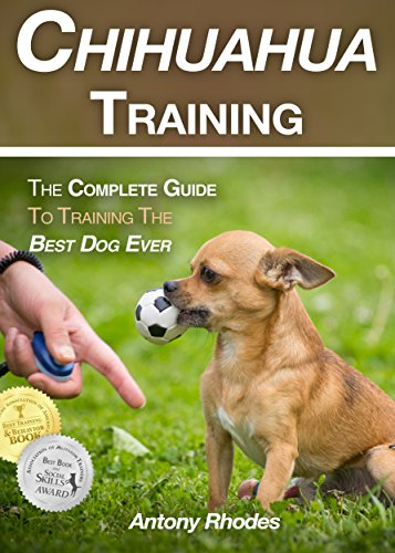 Chihuahua Training: The Complete Guide To Training the Best Dog Ever
