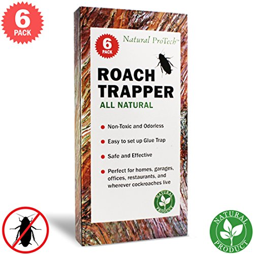 Natural ProTech Effective Cockroach Traps Sticky Glue - 6 pack Roach Traps Pet Safe for Indoor Use