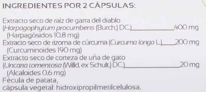 Anastore Dolores Articulares 310 mg - 60 Cápsulas: Amazon.es ...