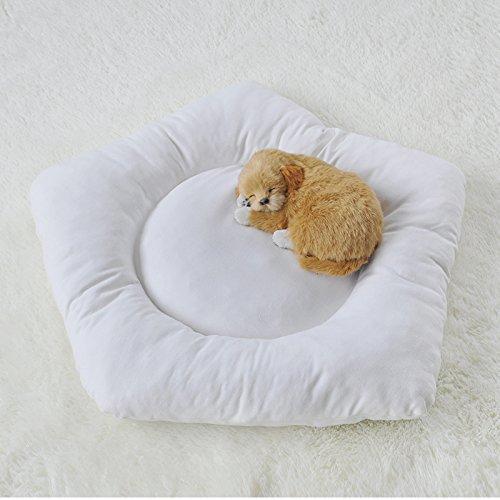 little dove Pet Mat Dog Comfortable Bed Sofa Full Washabl...