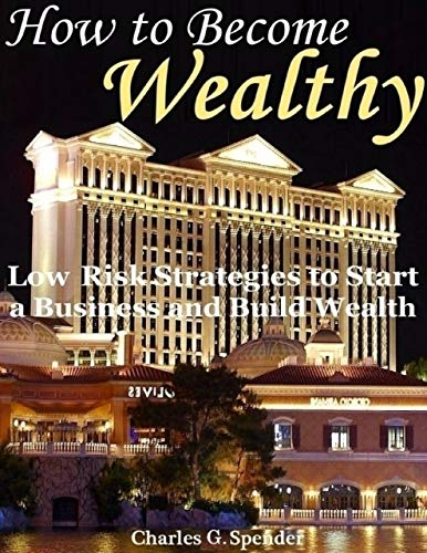 How to Become Wealthy: Low Risk Strategies to Start a Business and Build Wealth (English Edition)