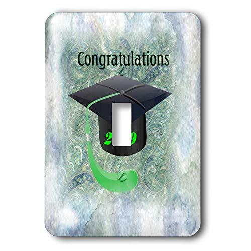 3dRose lens Art by Florene - Graduation - Image of Black 2019 Cap Green Tassel On Blue Green Brocade - Light Switch Covers - single toggle switch ()