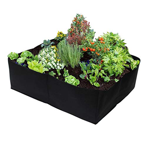 Gardzen Divided Raised Vegetable Bed, Square Foot Gardening 2Feet x 2Feet - Having Your Own Garden