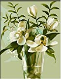 Colour Talk Diy oil painting, paint by number kit- Magnolia 1620 inch.