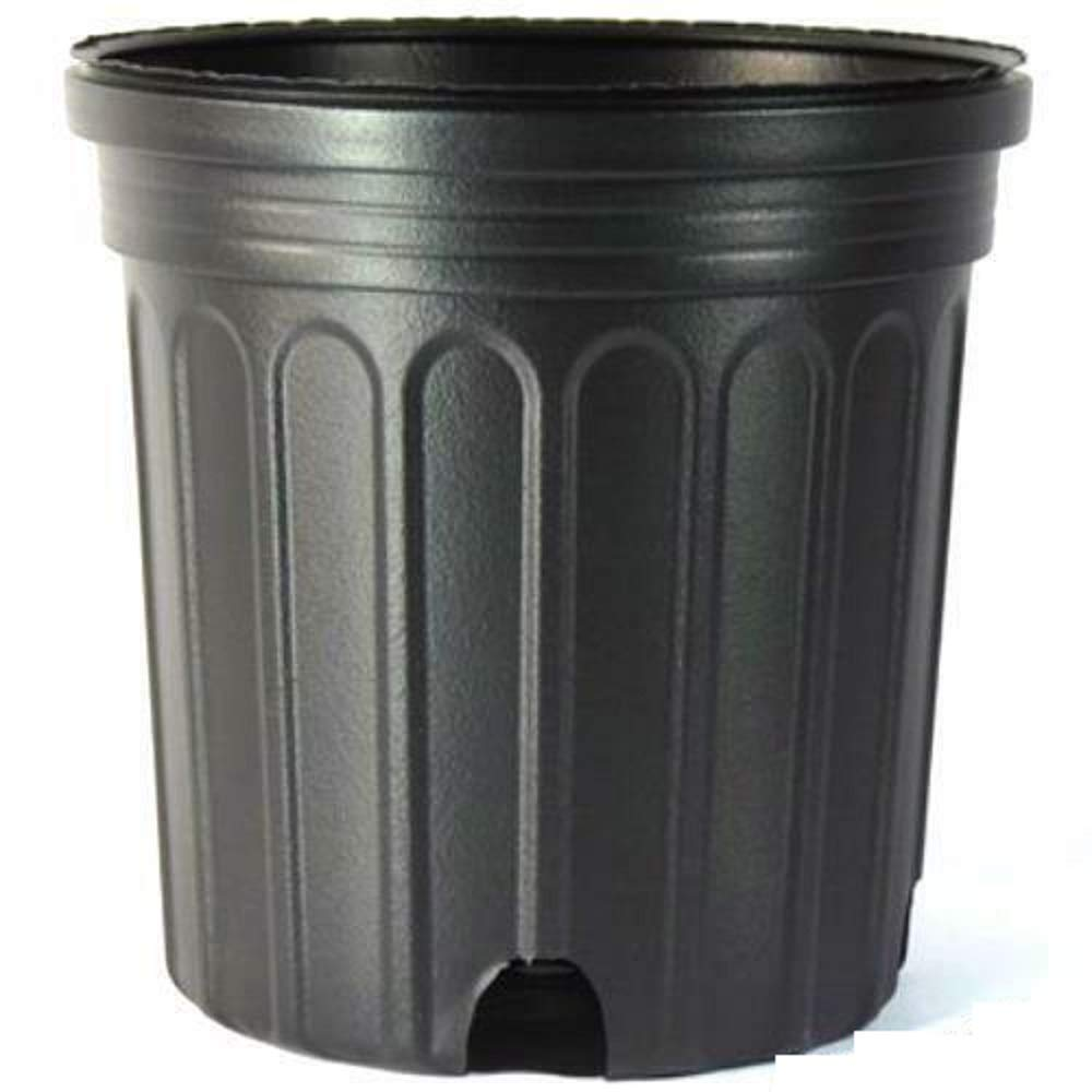 2 Gallon Nursery Pot, (Qty. 50), Black Trade 2 Gallon, Greenhouse Containers #SGNH