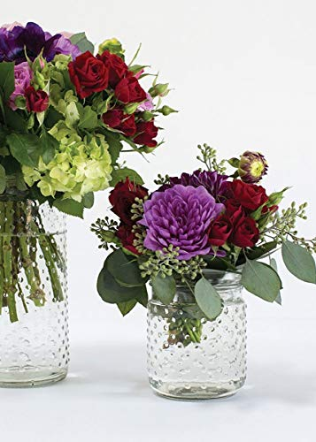 (Floral Home Clear Glass Hobnail Jar - 5
