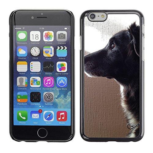 """Premio Sottile Slim Cassa Custodia Case Cover Shell // F00015706 Animal de compagnie // Apple iPhone 6 6S 6G 4.7"""""""