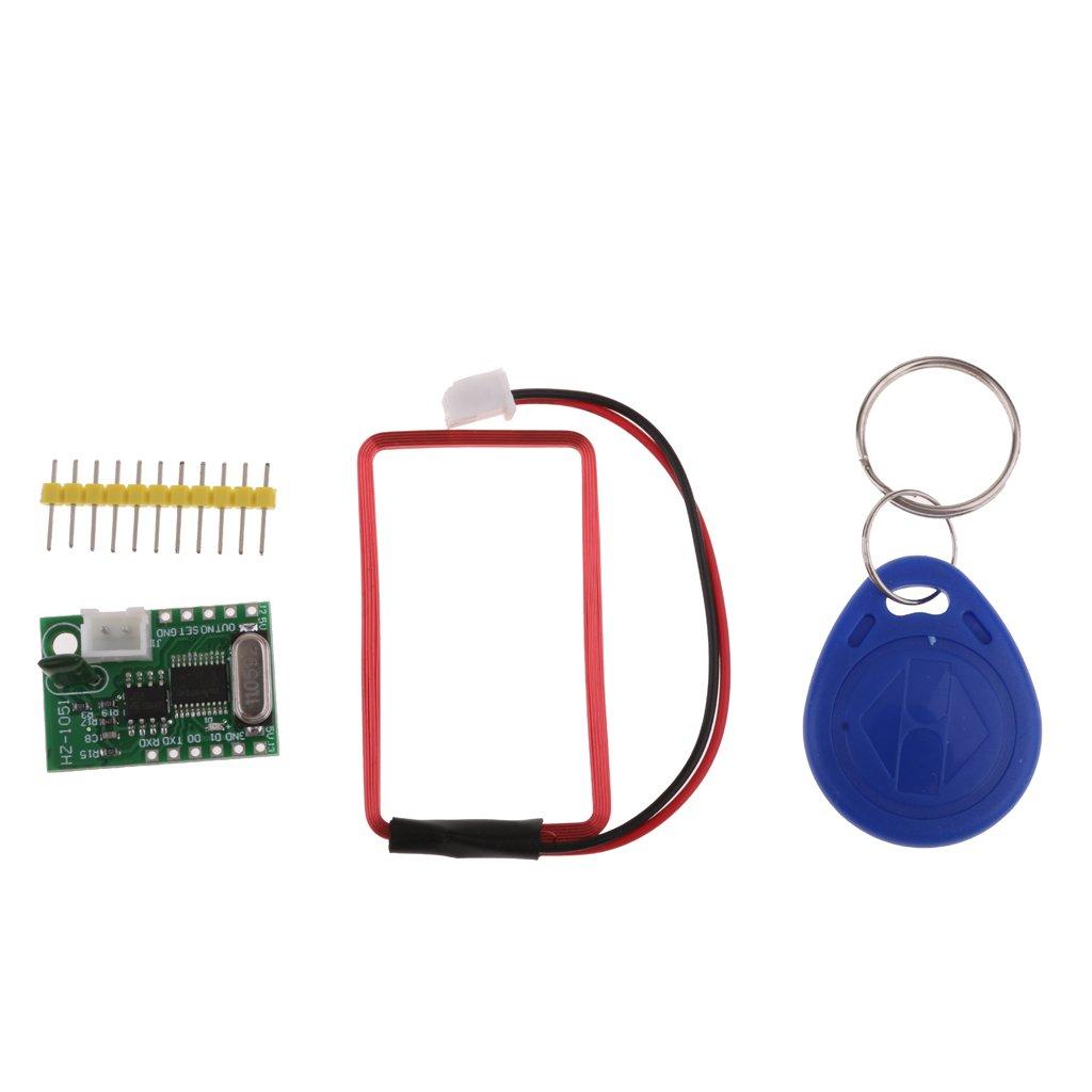 FLAMEER Module Du Lecteur Rf D'identification De Clé De Carte De 125Khz EM4100 RFID Rf Avec L'étiquette Principale Pour Arduino