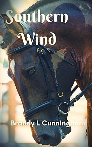 Southern Wind Text fb2 ebook