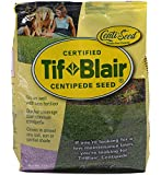 Tifblair Centipede Grass Seed (1 Lb.) Direct From the Farm