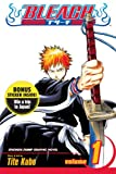 Bleach 40th Anniversary, Vol. 1 (Sweepstakes Edition)