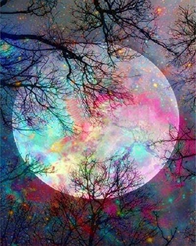 5D Diamond Painting through Number Kit, Bright Moon Full Drill Embroidery Cross Stitch Picture Supplies Arts Craft Wall Sticker Decor 11.8x15.8 inch