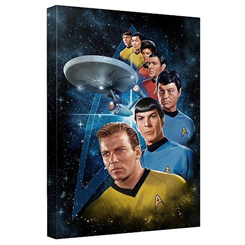 Star Trek Canvas Wall Art | Among The Stars (16&Quot; x 20&Quot;)