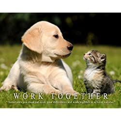 Cat Motivational Poster Art Print 11x14 Kitten Puppy Dog Labadore Toys Collar Wall Decor Pictures