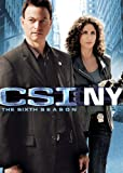 CSI: NY: Season 6