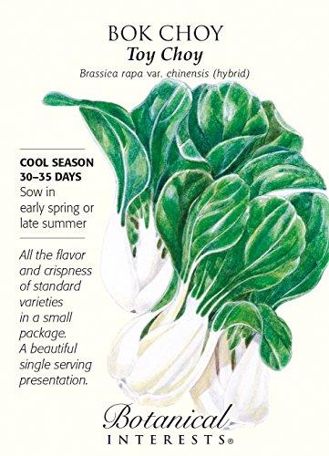 Toy Choy Bok Choy Seeds - 200 mg - Botanical - Choy Green Bok