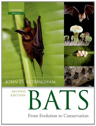 Species Bat (Bats: From Evolution to Conservation)
