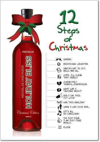 (12 '12 Steps of Christmas' Boxed Christmas Cards with Envelopes 4.63 x 6.75 inch, Funny Alcoholics Christmas Cards, Hilarious Boozy Holiday Notes, Silly Christmas Stationery B5923)