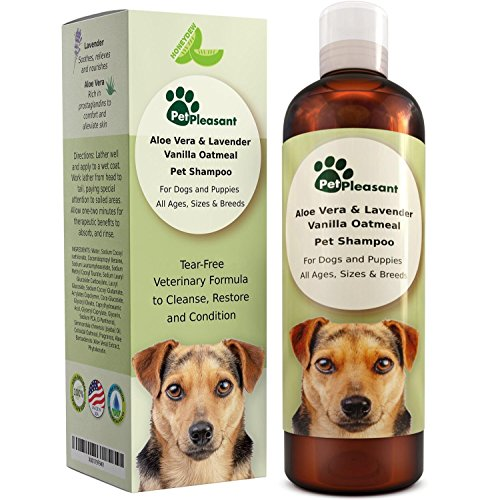 51UJVZQDJFL - Vanilla Oatmeal Dog Shampoo with Aloe Vera - Colloidal Oatmeal Shampoo for Dogs & Puppies - Anti Itch Pet Shampoo for Dogs with Sensitive Skin - Natural Odor Eliminator - Anti Flea and Tick for Dogs