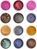 Haksons Pearl/Mica Powders (Pack of 12, Multicolour, 20gm Each) for Haksons Epoxy Resin and Hardener
