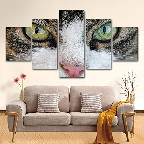 Yyjyxd ArtSailing 5 Piece Canvas Painting Cute Animal Kitty Cat Eye Art Wall Home Decoration for Living Room HD Prints Poster -4x6/8/10inch,with Frame