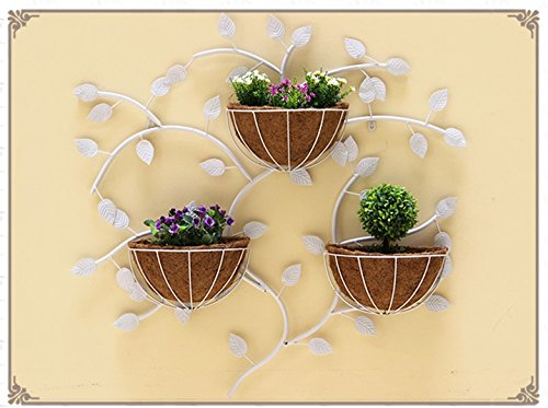 Creative Iron Walls Walls Walls Hanging Racks / Suspended Flowerpots / Indoor Wall Decorators / Plant Shelves ( Color : White ) by Flower racks - xin