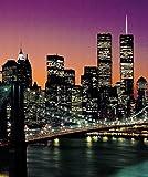 (72x100) Henri Silberman New York City Brooklyn Bridge Sunset Huge Wall Mural Art