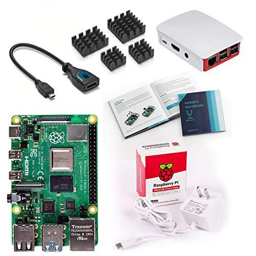 Vilros Raspberry Pi 4 Basic Starter Kit with Official Case (Red/White) (2GB) (Raspberry Pi 2 Kit)