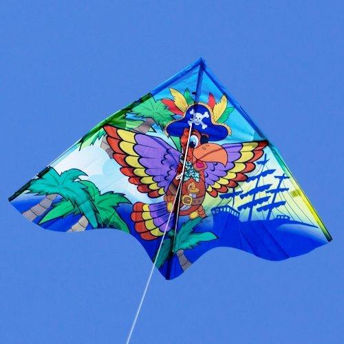 Pirate Rainbow Aeroplane Mini Butterfly Stunt Kite
