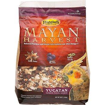 (Higgins Mayan Harvest Yucatan Food Mix for Cockatiels, Lovebirds & Conures, 3 lbs.)
