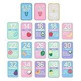 Pearhead Pregnancy Countdown Photo Cards, Multi