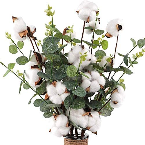 Nrpfell Tallos de AlgodóN de 21 Pulgadas - 4 Cabezas de AlgodóN con Hojas de Eucalipto - Espray de AlgodóN Natural Mezcla de Eucalipto Artificial Flor Decorativa Artificial 6 Piezas: Amazon.es: Hogar