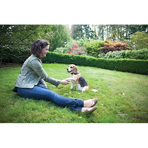 PetSafe Little Dog In-Ground Fence well-wreapped