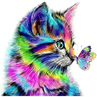Paint by Numbers-DIY Digital Canvas Oil Painting Adults Kids Paint by Number Kits Home Decorations- Cat and Butterfly 16 * 20 inch