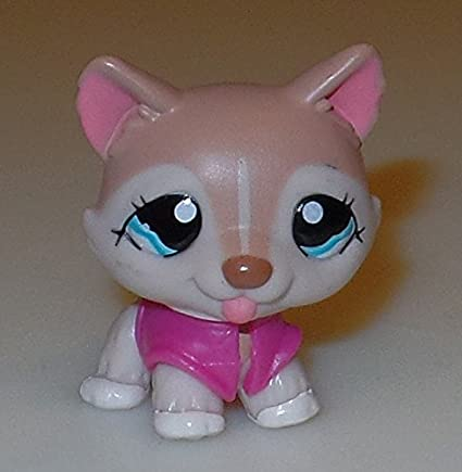 Collector Toy White, Tan Accents, Blue Eyes - Littlest Pet Shop Hasbro OOP Out of Package /& Print LPS Collectible Replacement Figure Loose Retired Husky #1012