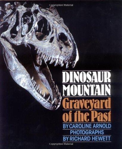 Dinosaur Mountain: Graveyard of the Past