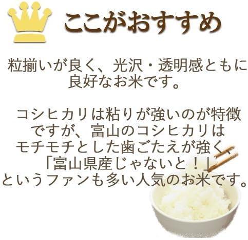 精米 令和元年産 富山県産 コシヒカリ 20kg(5kg×4) 工場直送