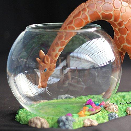 Decorative glass fish bowl aquarium giraffe home garden for Decorative fish bowls