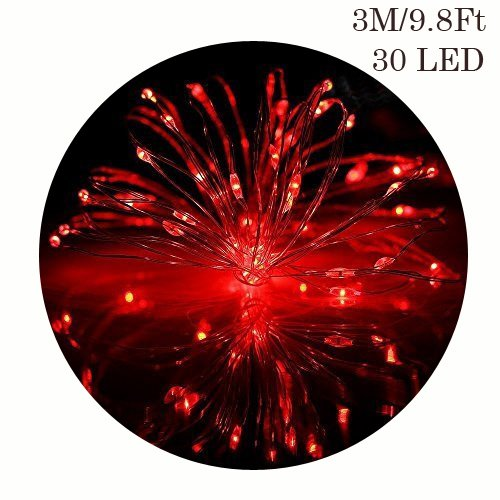 3M/9.8Ft 30 LED Copper Wire String Lights, GuanYuanGuang Fairy Firely Battery Operated Micro Lights for Girls Room, Valentines Day, Indoor Decor (Red)