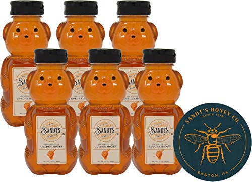 Sandt's Unfiltered Raw Golden Honey 12 Ounce Honey Bear (Pack of 6) with Sandt's Honey Magnet